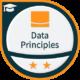 Data Engineering - Data Principles (Lightbend)